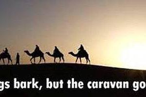 palestina-hundene-bjeffer-men-karavanen-fortsetter