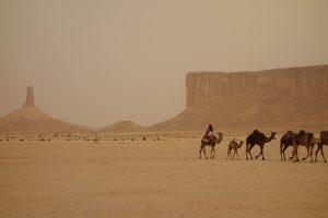 ramadan-og-reise